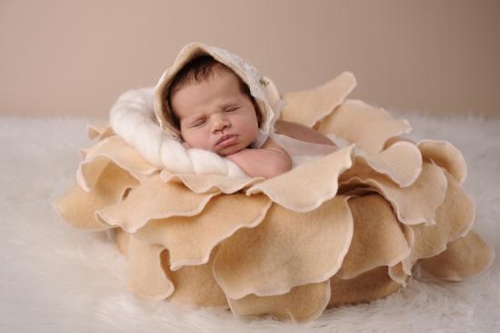 Neugeborenenfotografie Zürich Winterthur Volketswil KaroArt 2